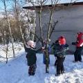 Dokarmiamy ptaki zimą